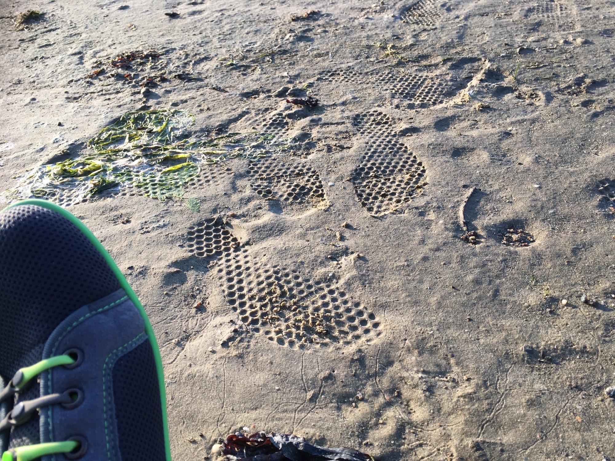 leguano Barfußschuhe an der Nordsee im Watt