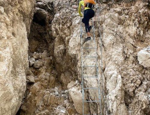 leguanos auf Klettersteigen